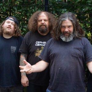 Venomous Concept band